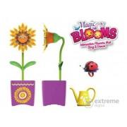 Floare magică dansatoare, cu stropitoare, cu gândăcel și gărgăriță
