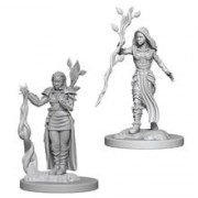 Set Figurine Dungeons And Dragons Nolzur's Unpainted Human Female Druid