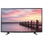 LG Televizor LED (49LV300C)
