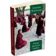 Esenta doctrinei budiste