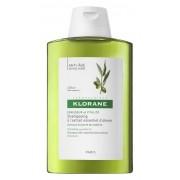 Klorane (Pierre Fabre It. Spa) Klorane shampoo Ulivo 200ml
