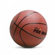 Pro Mini Hoop Ball XL™ SKLZ – Mini košarkaška lopta XL