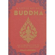 A Little Bit of Buddha: An Introduction to Buddhist Thought, Hardcover
