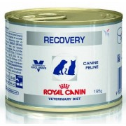 Royal Canin Veterinary Diet Recovery puszka 195g
