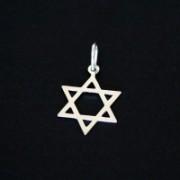 Pingente prata 925 estrela de Davi 3095