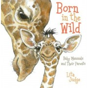 Born in the Wild: Baby Mammals and Their Parents, Hardcover