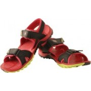 Puma Women Black-Barberry-Bluebird Sports Sandals