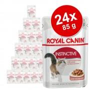 Royal Canin salsa y gelatina 24 x 85 g - Pack Ahorro mixto - Kitten Instinctive en salsa y en gelatina