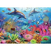 White Mountain Puzzles Dolphin Reef Jigsaw Puzzle (100-Piece)