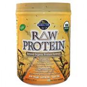 Garden Of Life Raw Protein Beyond Organic Protein Formula Unflavored - 22 Oz
