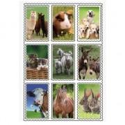 Merkloos 3D stickers van boerderij dieren 9 stuks