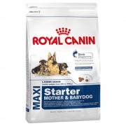15kg Maxi Starter Mother & Babydog Royal Canin Size Hrană uscată câini
