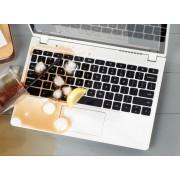 Reparatie dupa scaparea de lichide in laptop