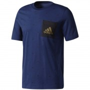 Vabaajasärk meestele adidas Essentials Graphic Pocket Tee M BQ9600