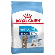 15kg Maxi Puppy/Junior Active Royal Canin