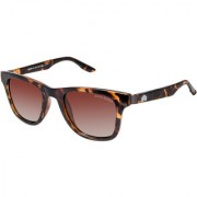 David Blake Brown Gradient Polarized UV Protected Wayfarer Sunglass