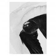 Anna Bülow-Flight Poster 30x40cm