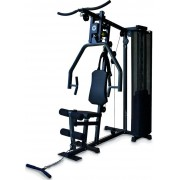 Aparat multifunctional fitness Horizon TORUS 1