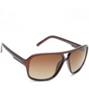 Daniel Klein Retro Square Sunglasses(Brown)