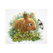Rabbit and Butterfly