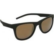 Polaroid Wayfarer Sunglasses(Golden)