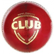 S.S. SPORTS Club Leather Cricket Ball ( Pack Of 2 ) ( Red )