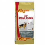 Royal Canin Breed ração para cães 7,5 kg a 12 kg em promoção: até 2,5 kg grátis! - Golden Retriever Junior (12 kg + 2 kg)