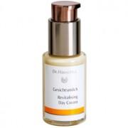 Dr. Hauschka Facial Care crema revitalizadora para pieles secas 30 ml