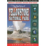 The Mystery at Yellowstone National Park, Paperback