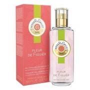L'Oreal Figuier Eau Parfume V 100ml