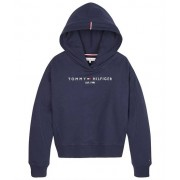 Tommy Hilfiger Essential hoodie sweat