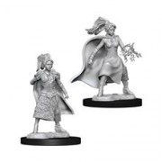 Set Figurine Dungeons And Dragons Nolzur's Unpainted Female Human Sorcerer