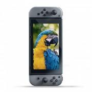 9H 2.5D 0.3mm Pelicula de vidrio templado para Nintendo Switch - Transparente