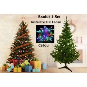 Brad artificial + instalatie 100 Led multicolor - 1.5 M