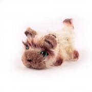 Pisici de plus Nr. 9 - Himalayana Coco