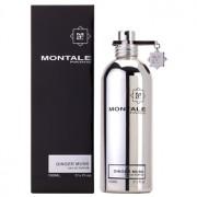 Montale Ginger Musk (Silver) Unisex Eau de Parfum Spray 100ml