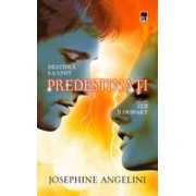 Predestinati - Angelini
