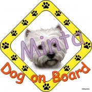Dog on Board matrica westie rajzzal 15x15 cm