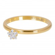 iXXXi Vulring Star Crystal Stone Goud Maat 20