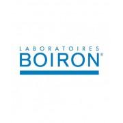 Laboratoires Boiron Srl Ribes Nigrum 60ml Tm
