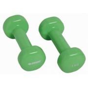 Schildkröt Fitness dumbbells 1 kg 2 stuks groen