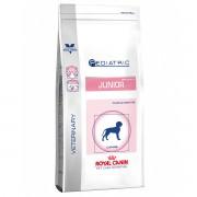 Royal Canin Pediatric Junior Medium Dog 10 kg