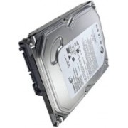 Seagate Seagate 500GB Hard Disk 500 GB Desktop, All in One PC's, Surveillance Systems Internal Hard Disk Drive (ST3500414CS)