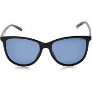 INVU Round Sunglasses(Blue)