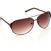 MTV Aviator Sunglasses(Brown)