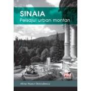 Sinaia Peisajul Urban Montan - Alina HuzuI-Stoiculescu