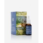 GAL K2+D3 vitamin 20 ml