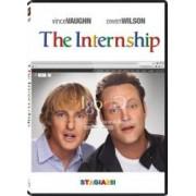 The internship DVD 2013