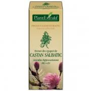 Extract din muguri de Castan salbatic