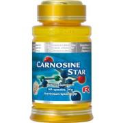 STARLIFE - CARNOSINE STAR